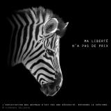 """Visuel animaliste """"En noir et blanc"""" - Zèbre, Florence Dellerie"""