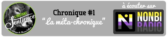 Bannière Chronique #1