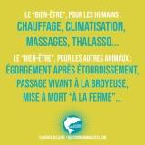 image_pensee_0_bien-etre_humain_animal_florence_dellerie