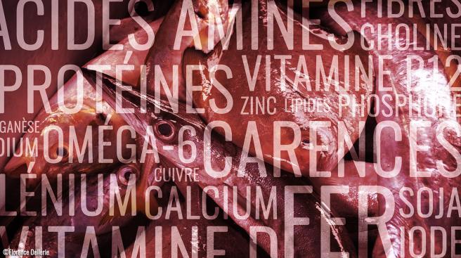 image_nutrition_animalisme_florence_dellerie