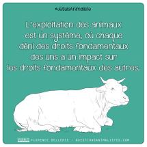 ANTISPÉ CITATION L'exploitation des animaux est un système (2018)