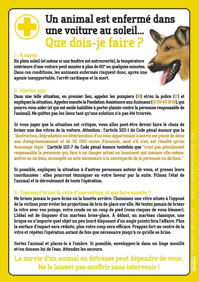 vegan_urgence_animal_voiture_soleil_dellerie