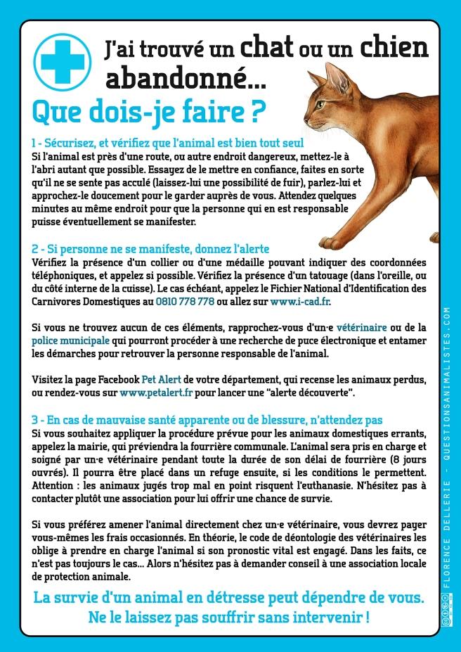 vegan_urgence_chat_chien_trouve_abandonne_dellerie