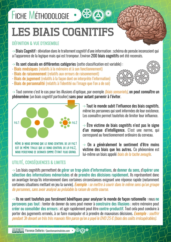 image_biais_cognitifs_methodologie_florence_dellerie