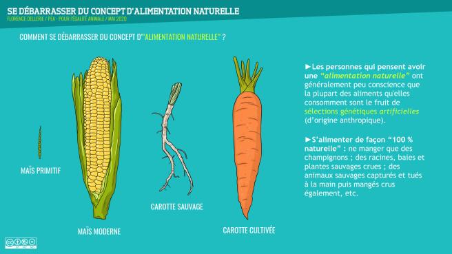 Se débarrasser du concept d'alimentation naturelle (F.Dellerie, 2020)-18