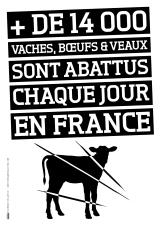 vegan_chiffres_14000_bovins_florence_dellerie