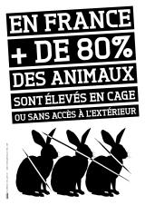 vegan_chiffres_80-pour-cent_animaux_cage_florence_dellerie