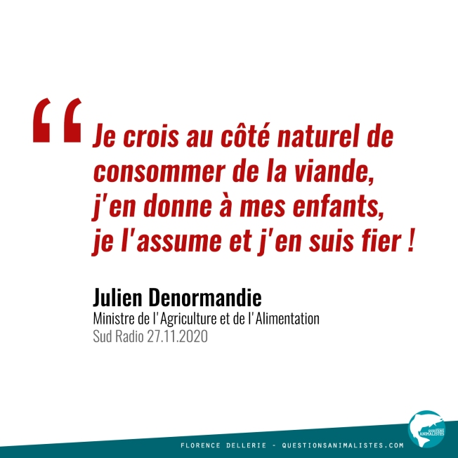 Citation Julien Denormandie 2020